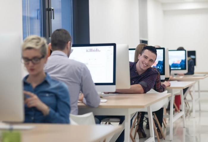 Employees working online at workstations